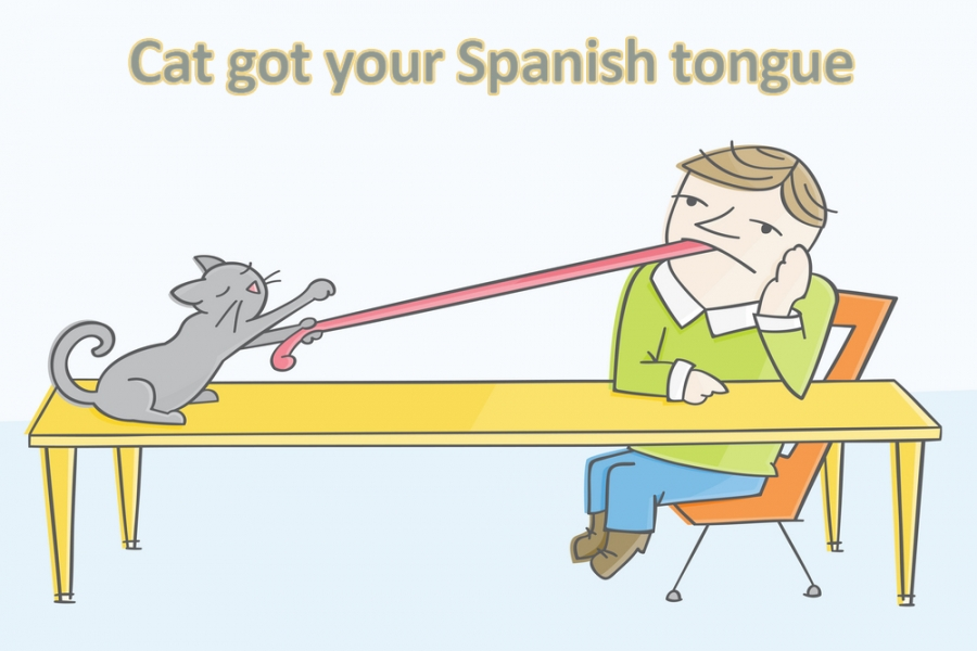 Cat got your Spanish tongue